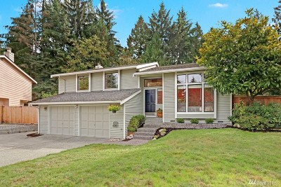 Bothell Single Family Home For Sale: 19817 26th Dr SE