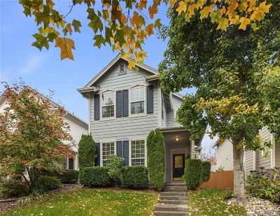 Snoqualmie Single Family Home For Sale: 7902 Douglas Ave SE