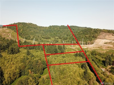Olympia WA Residential Lots & Land For Sale: $300,000