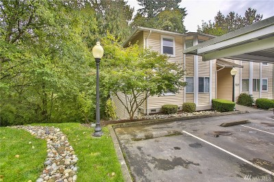 Snohomish Condo/Townhouse For Sale: 1101 10th St #24