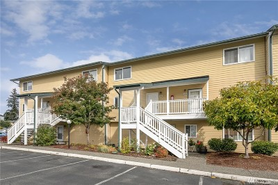 Snohomish County Condo/Townhouse For Sale: 8823 Holly Dr #L203