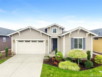 Olympia, Tumwater, Lacey Single Family Home For Sale: 8630 Anderson Ct NE