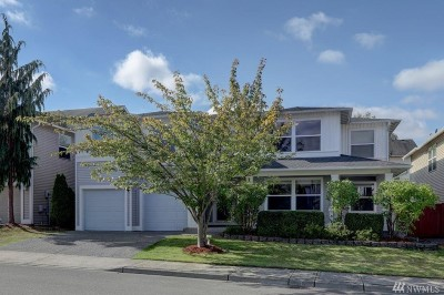Renton Single Family Home For Sale: 275 Index Place SE