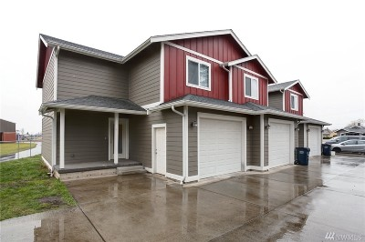 Everson, Nooksack Multi Family Home For Sale: 809 Mead Ave #1-9