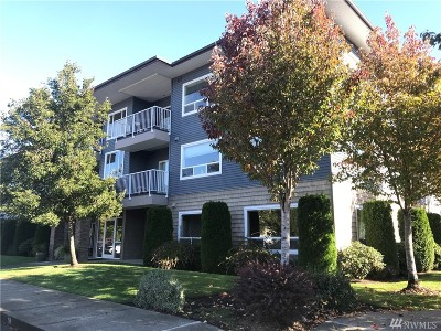 Bellingham Condo/Townhouse For Sale: 504 Darby Dr #112