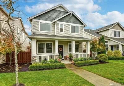 Lake Stevens Single Family Home For Sale: 2520 87th Ave NE
