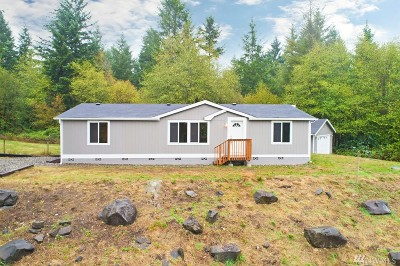 Gig Harbor Single Family Home For Sale: 13415 176th Ave