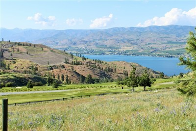 Chelan, Chelan Falls, Entiat, Manson, Brewster, Bridgeport, Orondo Residential Lots & Land For Sale: 322 Paintbrush Rd