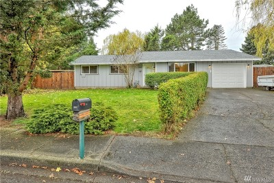 Lynden Single Family Home For Sale: 6849 Vail Dr