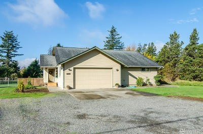 Bellingham Single Family Home For Sale: 4021 Jones Lane
