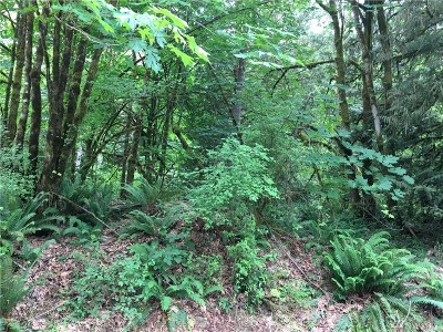 Residential Lots & Land For Sale: 2631 Division St NW