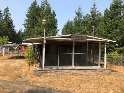 Tenino Single Family Home For Sale: 12047 Collins St SE