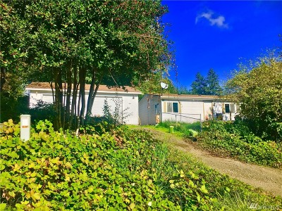 Belfair Single Family Home For Sale: 90 NE Davey Jones Ct