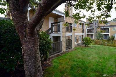 Snohomish County Condo/Townhouse For Sale: 5300 Harbour Pointe Blvd #302-H