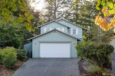 Bellingham Single Family Home For Sale: 3805 Briarcliffe Ct