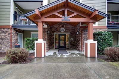 Whatcom County Condo/Townhouse For Sale: 690 32nd St #B305