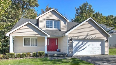 Seattle Single Family Home For Sale: 8139 4th Ave SW