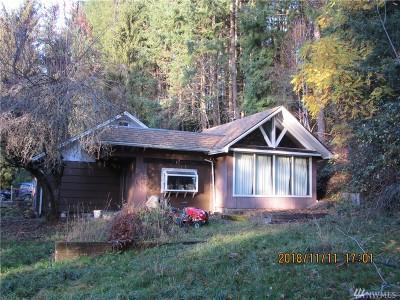 Centralia Single Family Home For Sale: 518 Girard St