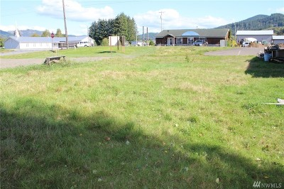 Residential Lots & Land For Sale: 720 S Forks Ave