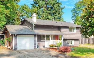 Seattle Single Family Home For Sale: 2420 SW 104th St
