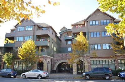 Seattle Condo/Townhouse For Sale: 4123 California Ave SW #205