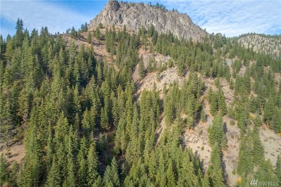 Chelan County, Douglas County Residential Lots & Land For Sale: Highway 97