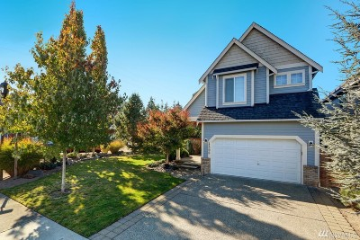 Puyallup Single Family Home For Sale: 17506 93rd Ave E