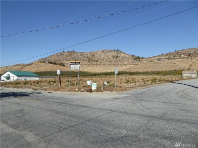 Chelan, Chelan Falls, Entiat, Manson, Brewster, Bridgeport, Orondo Residential Lots & Land For Sale: 2000 Wapato Lake Rd