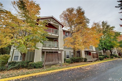 King County Rental For Rent: 7711 NE 175th St #C301