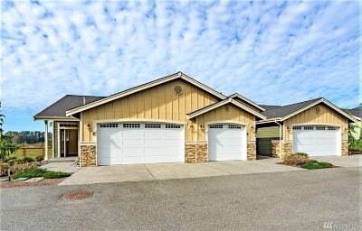 Skagit County Condo/Townhouse For Sale: 2515 River Vista Ct #C