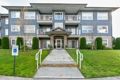 Whatcom County Condo/Townhouse For Sale: 516 Darby Dr #216