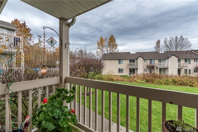 Bellingham Condo/Townhouse For Sale: 4244 Wintergreen Cir #269