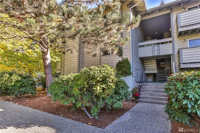 King County Condo/Townhouse For Sale: 1150 Sunset Blvd NE #302