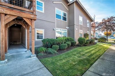 Lynden Condo/Townhouse Pending: 300 Homestead Blvd #103
