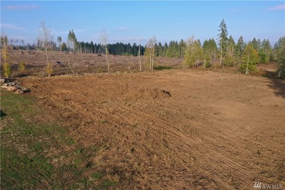 Shelton Residential Lots & Land For Sale: 143 SE Lynch Lane