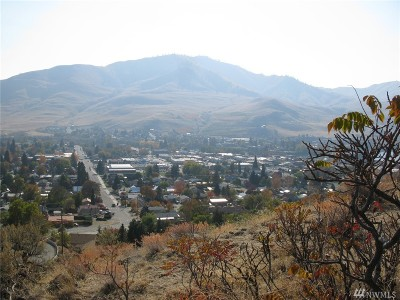 Chelan, Chelan Falls, Entiat, Manson, Brewster, Bridgeport, Orondo Residential Lots & Land For Sale: 761 N Bradley S