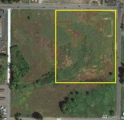 Residential Lots & Land For Sale: 4519 Birch Bay Lynden Rd
