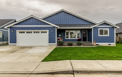 Nooksack Single Family Home For Sale: 405 Amareen Ct