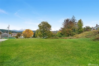 Eatonville Residential Lots & Land For Sale: 119 Rainier Ave S