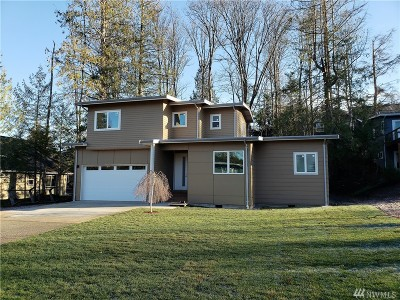 Bellingham Single Family Home For Sale: 513 36th St