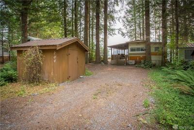 Whatcom County Single Family Home For Sale: 204 Big River Blvd E