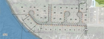 Blaine Residential Lots & Land For Sale: 32 Drayton Reach Lot 32