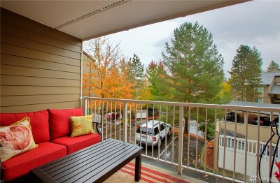 Issaquah Condo/Townhouse For Sale: 208 Mountain Park Blvd #E101