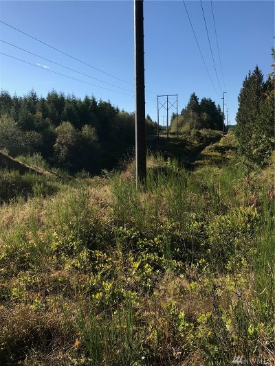 Residential Lots & Land For Sale: 999 Anderson Lake Rd