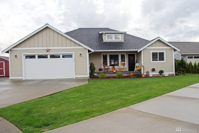 Nooksack Single Family Home For Sale: 501 Westview Place