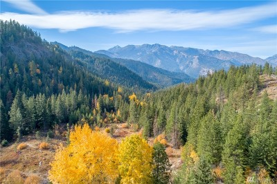 Chelan County, Douglas County Residential Lots & Land For Sale: Camas Creek Rd