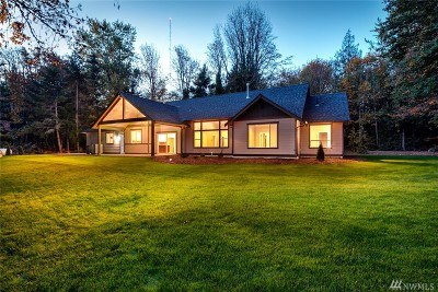 Whatcom County Single Family Home For Sale: 881 Palmer Rd