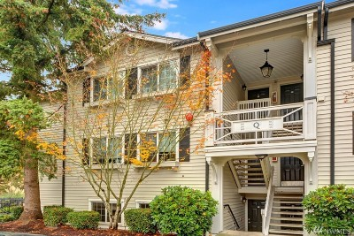 Everett Condo/Townhouse For Sale: 12404 E Gibson Rd #Q101