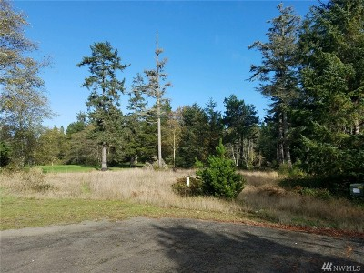 Residential Lots & Land For Sale: 1507 314th Place