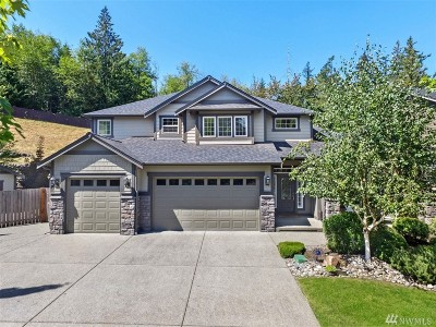 Lake Tapps Single Family Home For Sale: 3006 163rd Ave E